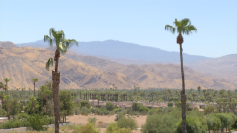 PSP_2 Palms-Mountains_Day_7-6-17